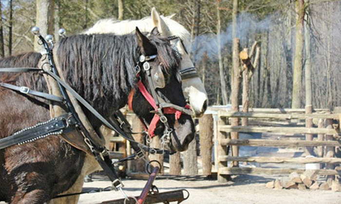 Shady Grove Maple Co - Guelph: $9 for a Tour and Wagon Ride for Two at Shady Grove Maple Co. ($19 Value). Four Dates Available.