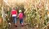 Oregon Dairy - Lititz: Admission to a Corn or Flashlight Maze for Two or Four at Oregon Dairy (Up to Half Off)