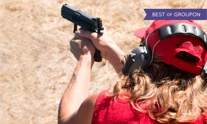 TriggerAction Firearms Training: Buying Your First Handgun Class for One or Two at TriggerAction Firearms Training (Up 58% Off)