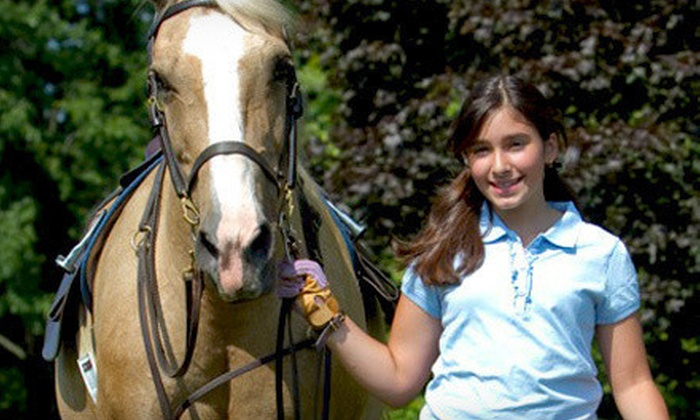 Kierson Farm - Kierson Farm: Two, Four, or Six Group Horseback-Riding Lessons at Kierson Farm (Up to 60% Off)