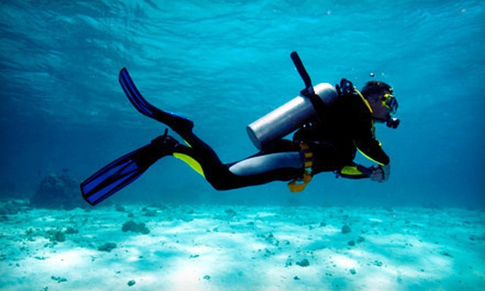 Got Air Scuba - Elk Grove Village: Two-Hour Discover Scuba Class or PADI Full Open-Water Scuba-Certification Course at Got Air Scuba (Up to 71% Off)