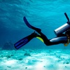 Up to 71% Off Scuba-Diving Classes
