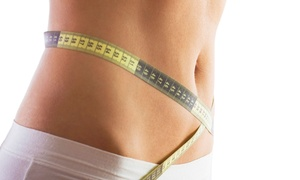Clarksville Laser Like Lipo: One, Three, or Six Laser-Like Lipo Sessions with Whole-Body Vibration at Clarksville Laser Like Lipo (Up to 81% Off)