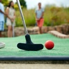 Up to 50% Off Mini Golf and Batting Cage at Tree Tops Golf