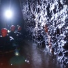 Cave Rafting and Glow Worm Tour