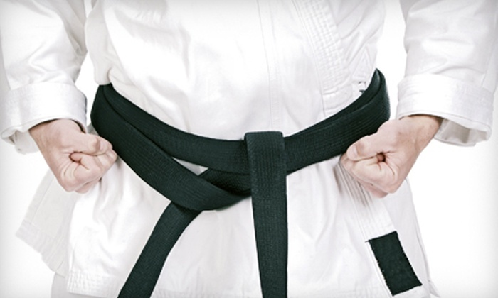 Karate Evolution - Gastonia: 8 or 12 Classes with a Uniform from Karate Evolution (Up to 77% Off)
