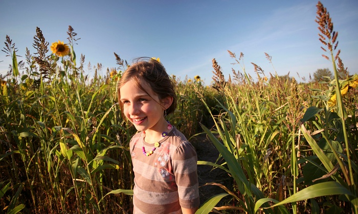 Fleitz Pumpkin Farm - Birmingham: Four or Six Corn-Maze Trips and Hayrides at Fleitz Pumpkin Farm (Up to 56% Off)