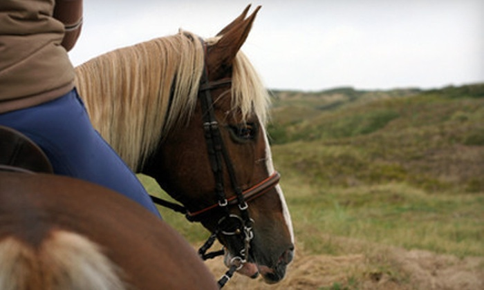 My Saddle Brook Farm - Montgomery: Trail Ride for One, Two, or Four at My Saddle Brook Farm (Up to 66% Off)