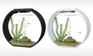 Deco O Mini or Large Designer Aquarium : Deco O Mini or Large Designer Aquarium