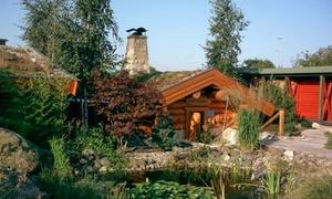 Wasserlandschaft & Saunadorf Platsch: 1 oder 2 Tageskarten für Saunawelt und Freizeitbad in der Wasserlandschaft & Saunadorf Platsch (50% sparen*)