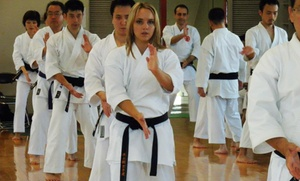 Way of life martial arts: Monthly Adult or Youth Memberships at Way of Life Martial Arts (Up to 52% Off). Four Options Available.