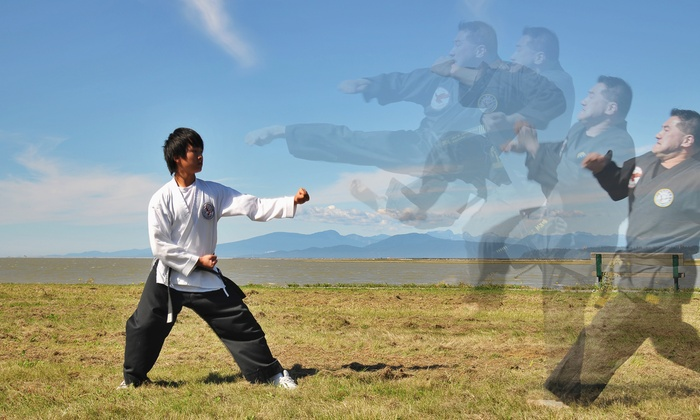 Lok's Hapkido School - City Centre: 10 or 20 Classes at Lok's Hapkido School (Up to 90% Off)
