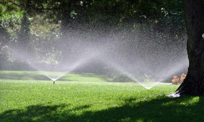 Raindance Irrigation - Tallahassee: $45 for Spring Sprinkler Turn-On and Tune-Up from Raindance Irrigation ($95 Value)