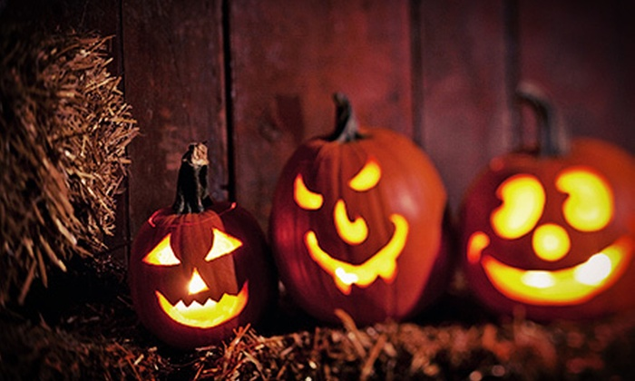 TG Farms Pumpkin Patch - Newcastle: Haunted Corn Maze and Hayride for Two or Four at TG Farms Pumpkin Patch (Up to 63% Off)