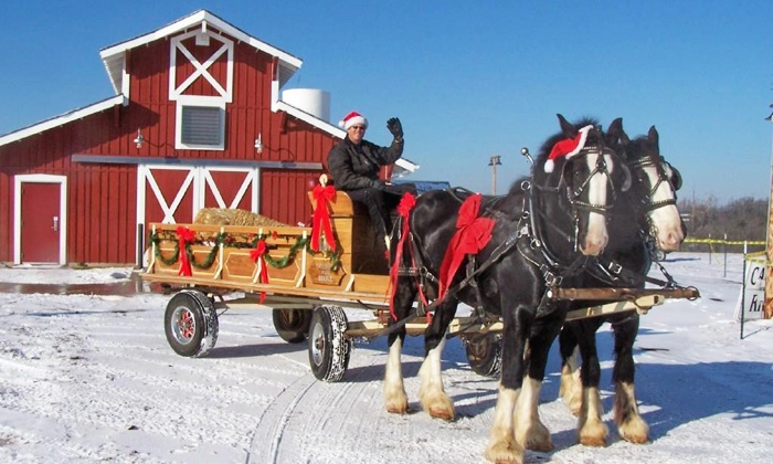 Shires for Hire, LLC - Springfield: $25 for a Horse-Drawn Carriage Ride with Santa Claus for Four from Shires For Hire ($50 Value)