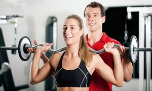 Evolution X Fitness: Three or Six Personal Training Sessions with a Fitness Assessment at Evolution X Fitness (Up to 78% Off)