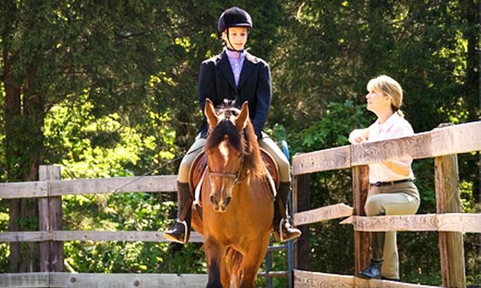 Vector Equestrian - Hamilton: $79 for Four 60-Minute Horseback-Riding Lessons at Vector Equestrian ($158.20 Value)