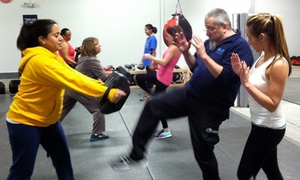 Blitz Krav Maga: 5, 10, or 20 Krav Maga Classes at Blitz Krav Maga (Up to 81% Off)