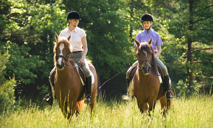 Healing Horse Adventures - Simi Valley: Private Trail Ride or Horseback-Riding Lesson for One or Two at Healing Horse Adventures in Simi Valley (Up to 53% Off)