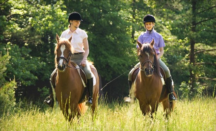 Choice of a Private 60-Minute Trail Ride for One or a 30-Minute Trail Ride for Two (an $80 value) - Healing Horse Adventures in Simi Valley