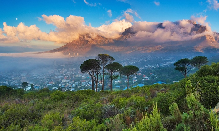 Tour Of South Africa With Game Drive And Airfare From Gate