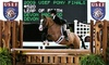 Turning Point Show Stables - Kensington: Two or Four 30-Minute Private Horseback-Riding Lessons at Turning Point Show Stables (Up to 56% Off)