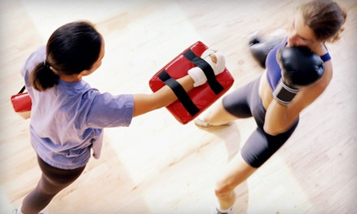 The American Academy of Self Defense - The American Academy of Self Defense: One or Two Months of Martial-Arts Classes for Children 3-15 at American Academy of Self Defense (Up to 74% Off)
