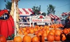 Up to 49% Off Day of Fun at Pumpkin City's Pumpkin Farm