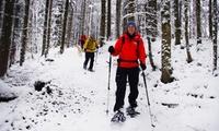 3-4 Std. Schneeschuh-Wanderung inkl. Verleih von Schneeschuhen und Stöcken mit Sayaq Adventures (bis zu 26% sparen*)