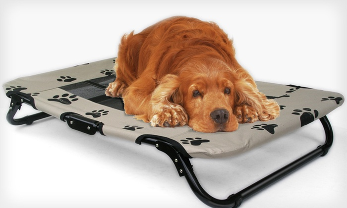 Foldable Pet Cot With Mesh Insert: Foldable Pet Cot With Mesh Insert ...
