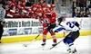 Arizona Sundogs - Prescott Valley: $15 to See an Arizona Sundogs Hockey Game at Tim's Toyota Center (Up to $31.75 Value).  Five Games Available.