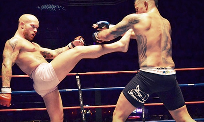 National Fighting Championship: Fight Night #59 - Wild Bill's: One Ticket for National Fighting Championship: Fight Night #59 at Wild Bill's on Saturday, September 7 (Up to 51% Off)