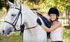 Arcadia Stables - Groveland: $45 for Two 60-Minute Private Horseback-Riding Lessons at Arcadia Stables in Holly ($100 Value)