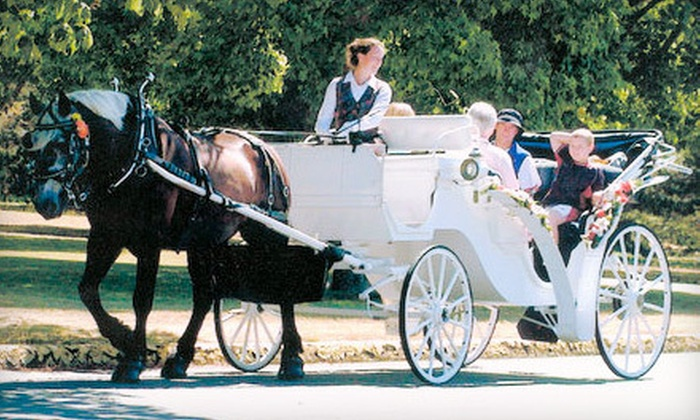 Black Beauty Line - Victoria: Horse-Drawn-Trolley Tour for Two or Four, or a Carriage Tour for Up to Six from Black Beauty Line (Up to 56% Off)
