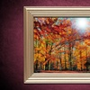 Up to 41% Off Gallery-Wrapped Giclee Canvas Art
