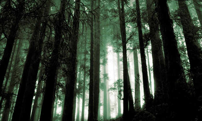 """Broadway Theatricals presents """"Into The Woods"""" - Downtown San Bernardino: $8 for Broadway Theatricals Presents """"Into the Woods"""" at Sturges Center of the Fine Arts (Up to $16 Value)"""