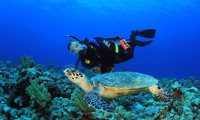 Doctorscuba - Doctorscuba: Corso di sub per il conseguimento del brevetto New Diver da 34 € invece di 190