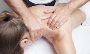 Novi Chiropractic Clinic: Chiropractic Exam with Consultation, X-rays, and One or Three Adjustments at Novi Chiropractic Clinic (Up to 92% Off)