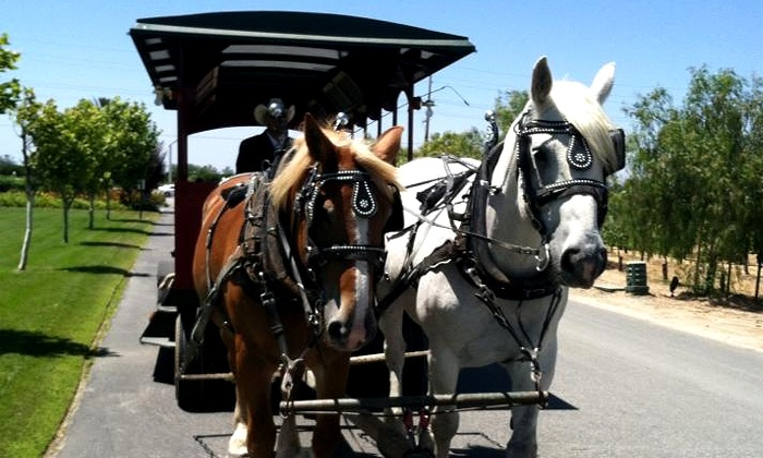 Temecula Carriage Company - South Coast Winery HOTEL: Jingle Bell Sleigh Ride for Two, Four, Six, or Private Group from Temecula Carriage Company (Up to 52% Off)