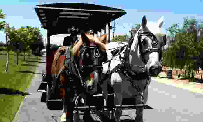 Temecula Carriage Company - The Temecula Carriage Company: Jingle Bell Sleigh Ride for Two, Four, Six, or Private Group from Temecula Carriage Company (Up to 52% Off)