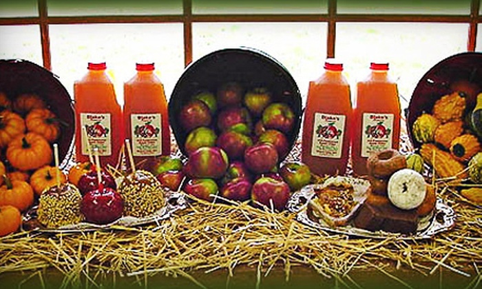 Blake's Big Apple Orchard and Cider Mill - Multiple Locations: Fall-Festival Passes for Two, Four, or Six at Blake's Big Apple Orchard and Cider Mill (Up to 52% Off)