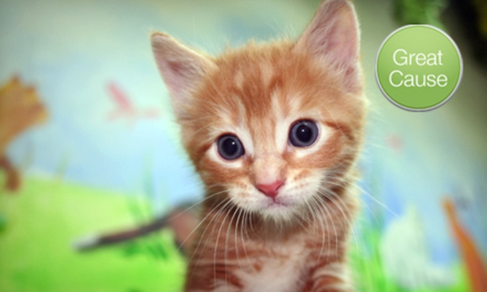 Feral Cat Spay/Neuter Project: $5, $15, or $25 Donations to Feral Cat Spay/Neuter Project