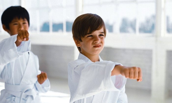 Ultimate Karate Academy - Midlothian: $24 for One Month of Unlimited American-Style Children's or Adult Karate Classes at Ultimate Karate Academy ($135 Value)