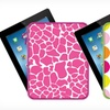 $7.99 for The Macbeth Collection iPad Case