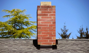 Total Exterior Services: Chimney Sweeping with Optional Fireplace or Furnace Cleaning from Total Exterior Services (Up to 50% Off)