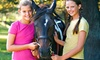 Up to 57% Off Horseback Riding