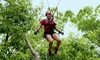 ZipQuest - Fayetteville: Swing Shot Ride for Two or Four at ZipQuest (Up to 57% Off)