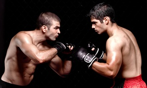 Pride Martial Arts: Four or Eight Weeks of Unlimited Kickboxing Classes with Gloves at Pride Martial Arts (Up to 74% Off)