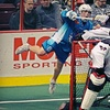 Rochester Knighthawks – $10 for Lacrosse Ticket