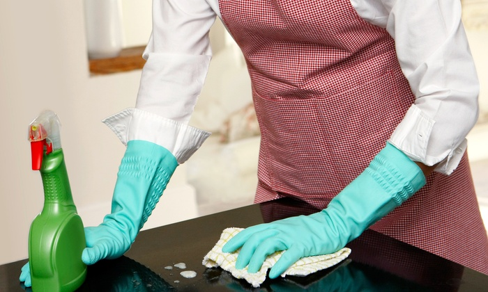 Queen Bee House Cleaning - Lynnwood: $5 Buys You a Coupon for 10% Off First Cleaning for New Customers at Queen Bee House Cleaning